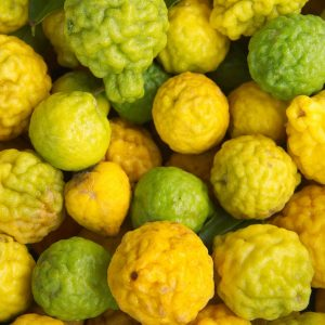 Bergamot oil Bergaptene free | Essential Oils and Resinoids