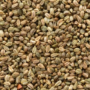 Celery Seed oil China | Essential Oils and Resinoids