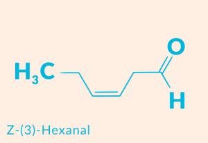 z-3-hexanal