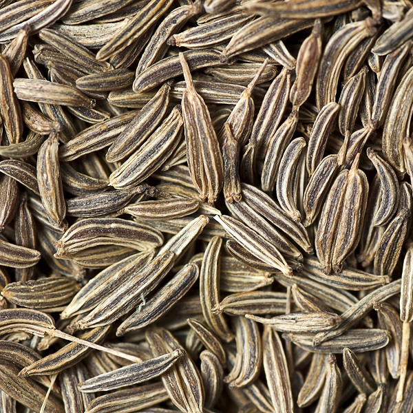 Caraway Seed oil East Europe | Essential Oils and Resinoids