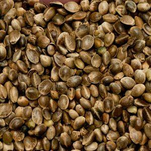 Gold of Pleasure Unrefined | Vegetable Oil Supplier | Equinox Aromas