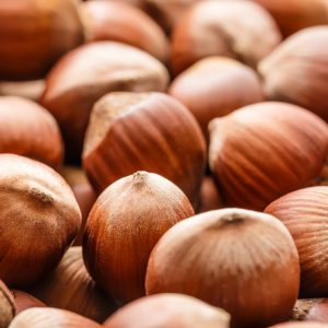 Hazel Nut Oil | Infusions and Vegetable Oil Company | Equinox Aromas