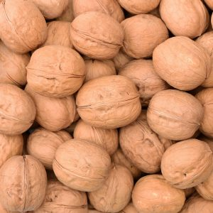 Walnut Oil | Infusions and Vegetable Oils | Equinox Aromas