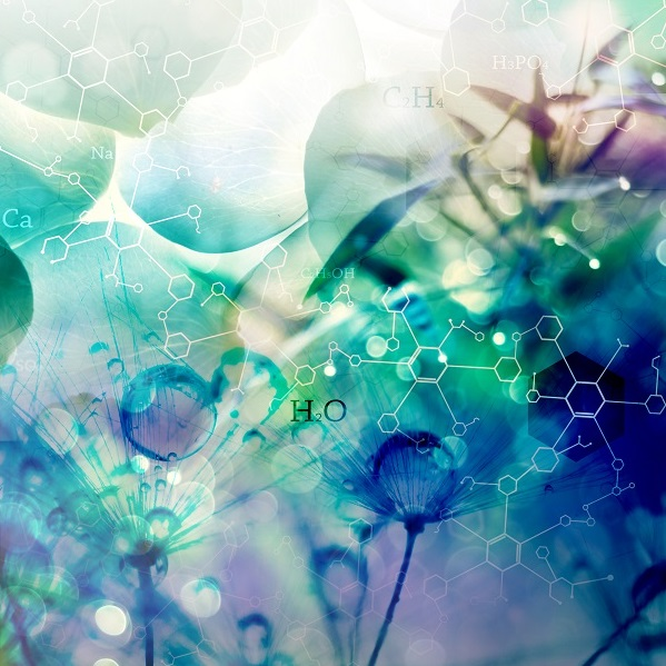 Laevo menthyl acetate| Perfumery Chemicals | Equinox Aromas