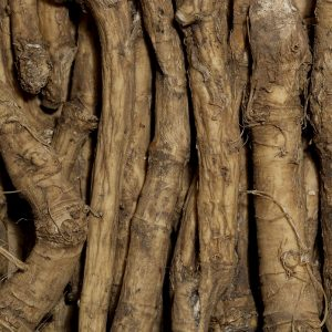 Horseradish Oil   Flavour and Organic Oil Supplier   Equinox Aromas