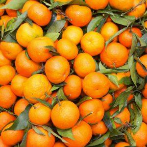 Mandarin Oil | Essential and Vegetable Oils | Equinox Aromas